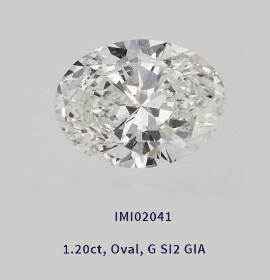 imi02041